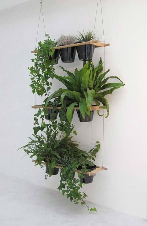 nice wall indoor garden