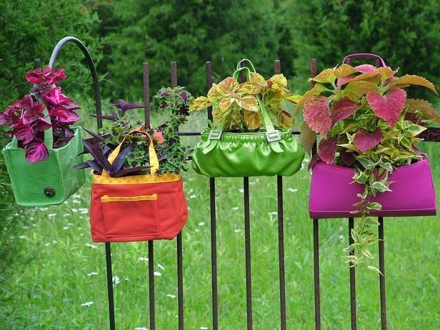 Make your home garden beautiful with unused purse...!!!  #garden #gardening
