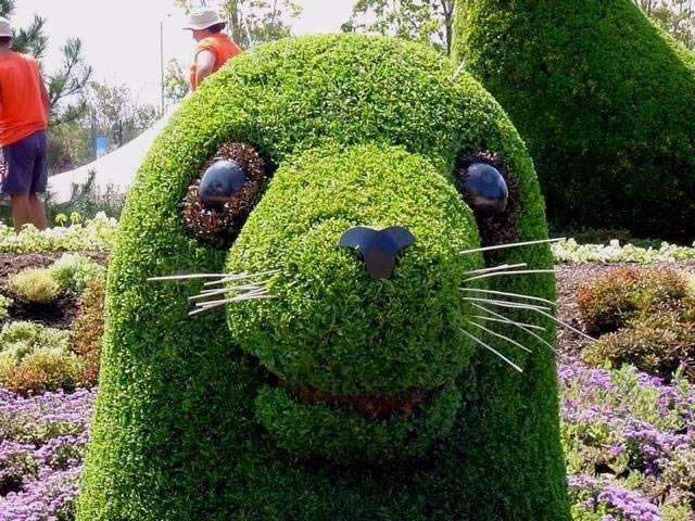 Just amazing idea to make garden beautiful..!!  #garden #gardening