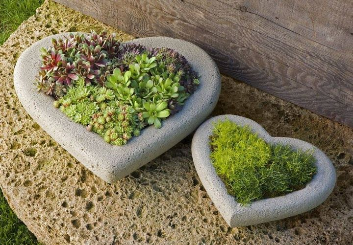 Perfect home gardening ideas for small space.. What you say..??  #gardening #gardening #Homegarden
