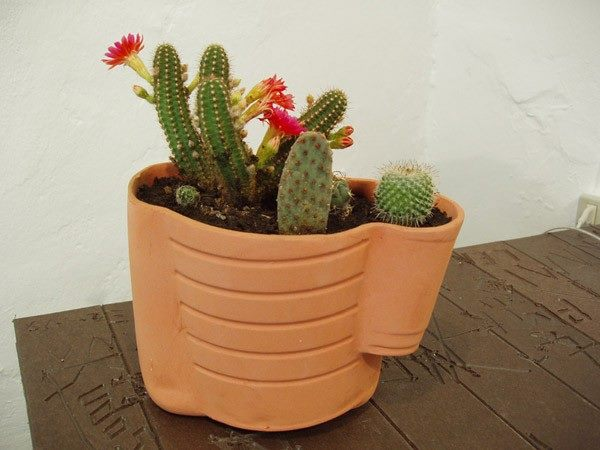 Make your enterence beautiful with amazing #flowerpot like this one..!!