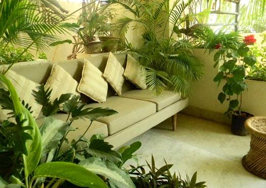Balcony #gardening idea with plants for  apartment gardens & enjoy your #Sunday  #garden