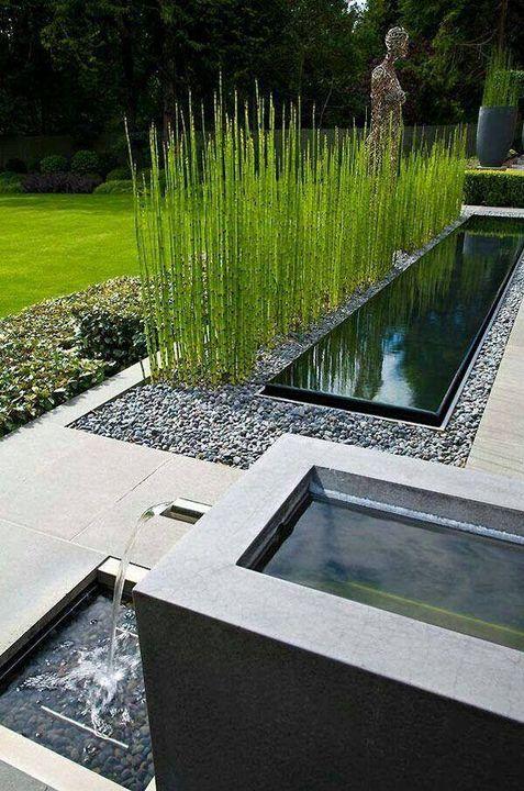 Sharpex Engineering,  garden