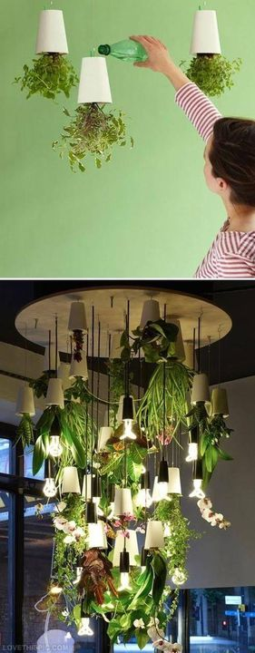 Indoor #HerbsGarden Ideas..!!1  #idoorgarden