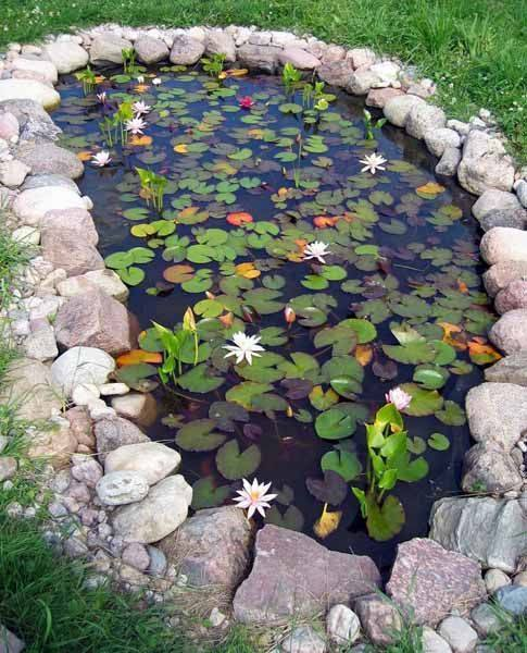 Your #garden look beautiful with this small pond.!!! #gardeningideas