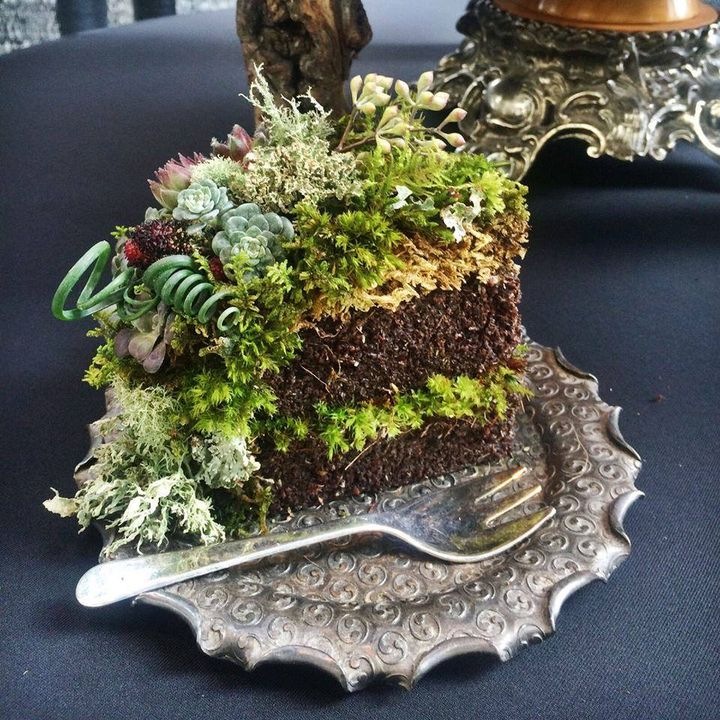 Planted Piece of Cake by Lusher Life Design based in Seattle, Washington, U.S. It won a Red Ribbon at the Northwest Flower & Garden Show.