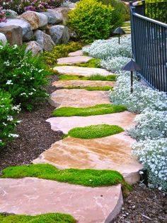 Amazing #Garden path..