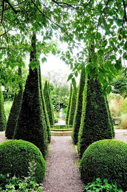 Outdoor #gardening