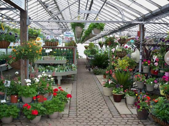 Awesone #gardening center..!!