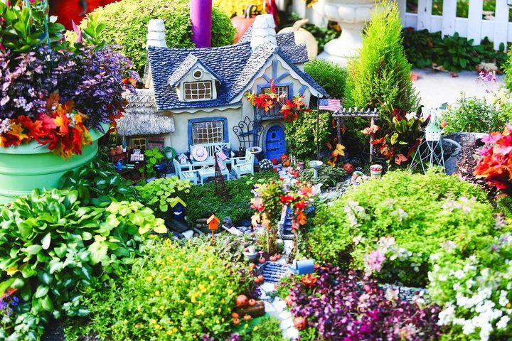 Its amazing cottage #garden