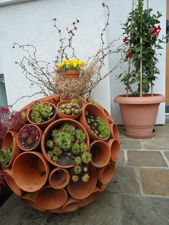 #Succulent Container Pot...