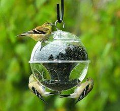 Cute #birdfeeder for your garden..