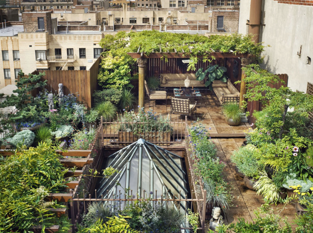 MULTI-LEVEL URBAN ROOF TOP GARDEN!