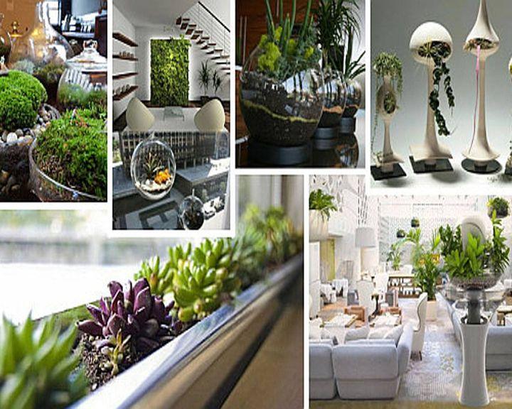 Indoor gardening ideas!