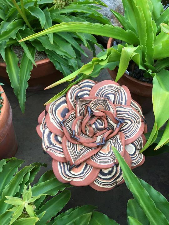 decorate your garden with ceramic agave!!