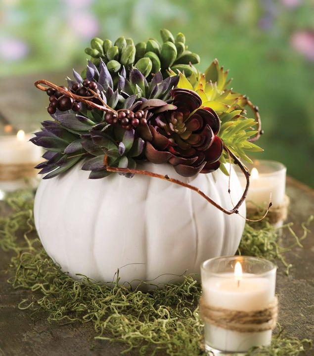ceramic pumpkin & succulent arrangement!