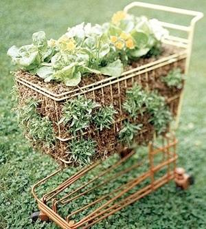Container Gardening Idea - Shopping Cart Used as a Salad Planter!