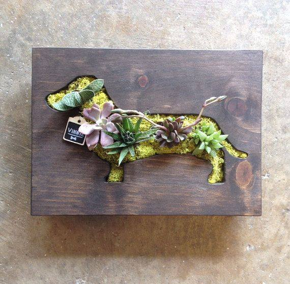 custom dachshund shaped Succulent Vertical!