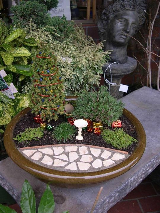 miniature Christmas garden!