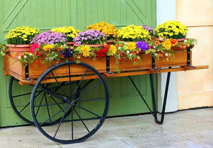 This #flowercart looking so nice.!!