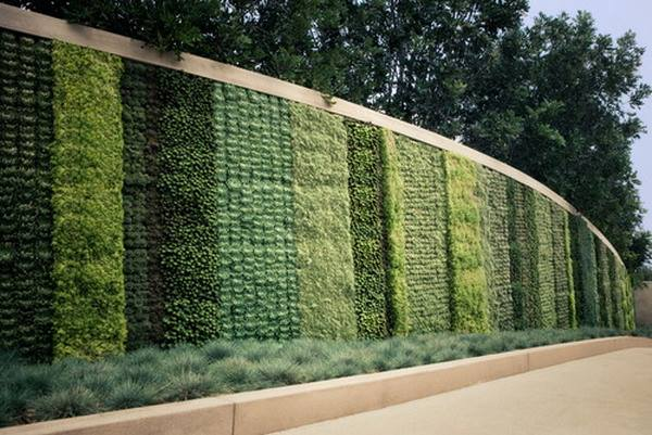 Contemporary Green Vertical #WallGarden Patio