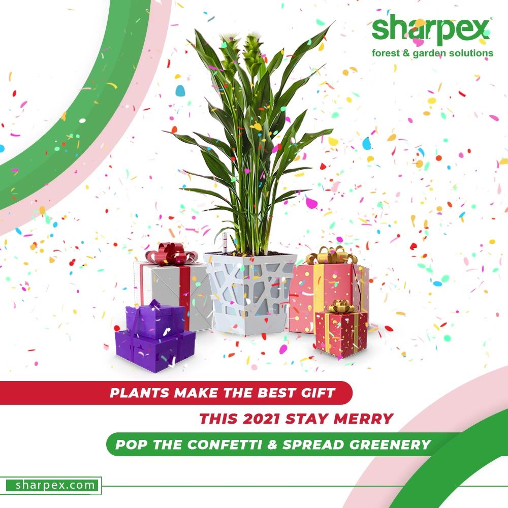 Plants make the best gift; hence the plants deserve to be planted right.  This 2021 stay Merry; pop the confetti & spread greenery with the kind kind of gardening accessories from Sharpex Gardening And Community.  #NewYearResolution #Resolutions2021 #BeAGardener #GardenLovers #GardeningAccessories #GardeningTools #ModernGardeningTools #GardeningProducts #GardenProduct #Sharpex #SharpexIndia