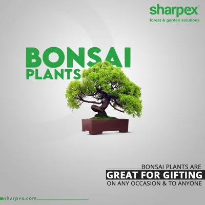 Bonsai plants are popular for their artistic designs that are aesthetically appealing and visually gratifying.   The sheer beauty of the bonsai plants along with the nutritive value makes them ideal for gifting on any occasion and to anyone.  #BonsaiPlants #GardeningTools #ModernGardeningTools #GardeningProducts #GardenProduct #Sharpex #SharpexIndia