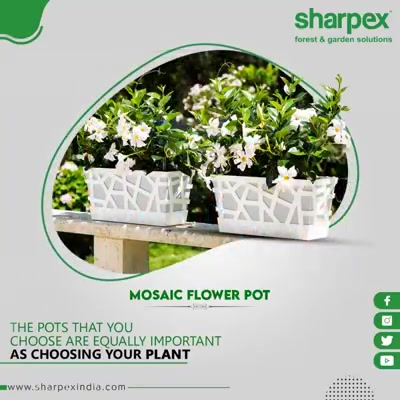 The flower pots you choose are equally important.  Allow the indoor plants to bloom with grace and compliment your home-décor.  #MosaicFlowerPot #FlowerPot #GardeningTools #ModernGardeningTools #GardeningProducts #GardenProduct #SharpexIndia