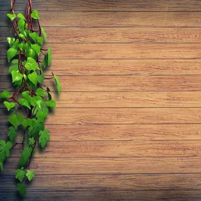 Wall Mount Hose Hanger with Durable Material   https://sharpexindia.com/gardening/ Sharpex Gardening Community  #gardening #gardeningproducts #flower #gardenproduct #gardenpot #happy #plantershelfstand #flowerpots #plant #garden India Reliance Industries Limited Tanfac Industries Limited [AdityaBirla Group]Ultratech Cement-Narmada Cement Jafrabad WorksUltraTech Cement (Aditya Birla Group)JW MarriottSanghi CementAsia/KolkataDLF CyberHubAndheri (west)Andheri WestSKF FoundationMBC BOLLYWOODTMU Digital Branding & Digital Marketing LLPAhmedabad, IndiaPune, MaharashtraSerai Resorts #hotel(s) #besthotel(s) #luxuryhotel. #boutiquehotel Interior Designers in Banaglore Mumbai-Homes 1313 Delhi HomesJuhu Beach Resort PuneHome chennaihost Lemon Tree HotelsThe Fern Hotels & ResortsGoa, IndiaKovalam Beach, Kerala, IndiaDiu Daman Pondicherry Happenings
