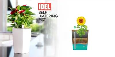 Self-nourishment is the best way to grow.  https://sharpexindia.com/  #gardening #gardeningproducts #flower #flowerpot #Secateur #gardenproduct #gardenpot #happy #plantershelfstand  Ahmedabad, India Gandhinagar, Gujarat Vadodara, Gujarat, India
