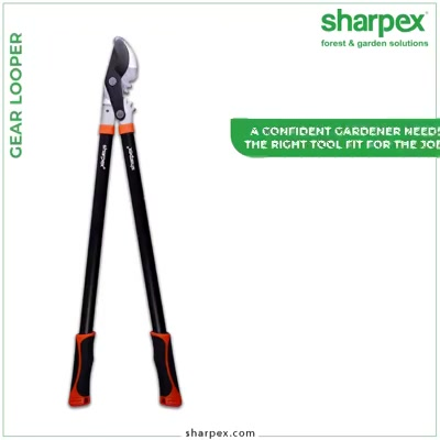 A confident gardener needs the right tool fit for the job! The Sharpex #GearLoppers are designed to a professional standard with superior manufacturing processes, attention to quality, performance & thoughtful designs that make this an essential piece of gardening equipment.  #GardeningTools #ModernGardeningTools #GardeningProducts #GardenProduct #Sharpex #SharpexIndia